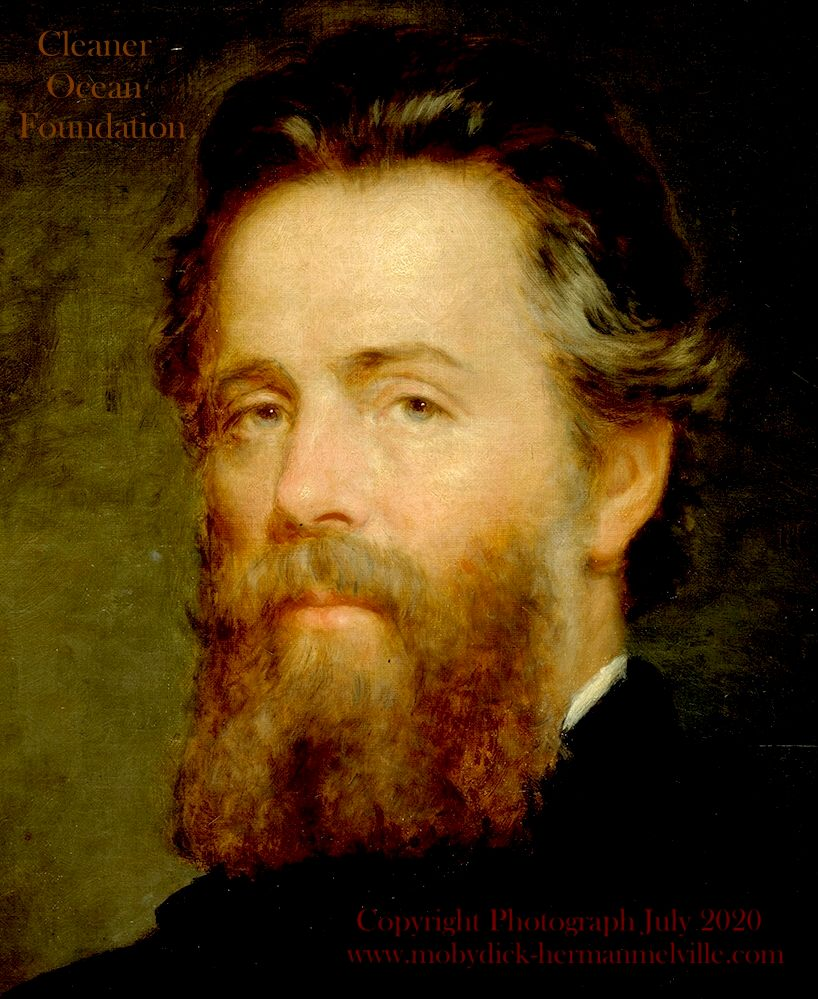 Copyright picture of Herman Melville August 2020, Cleaner Ocean Foundation